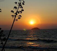 Lake Sunrise by DUNCAN DAVIE