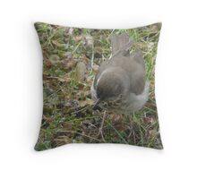 Ice Crystals and NO Bugs Throw Pillow