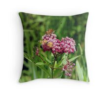 Swamp Milkweed (Asclepias incarnata L.) With Butterflies, Bees & Bugs! Throw Pillow