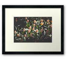 Spring Mood Framed Print