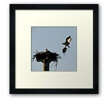 I Will Take Care Of You Framed Print