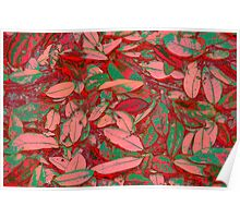 Pink Red and Green Fallen Leaves Poster