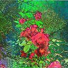 Fenceline Roses by Deborah Dillehay