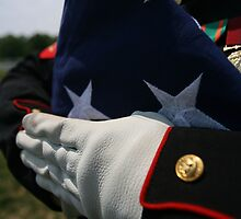 Some Gave All by Beverly Lussier