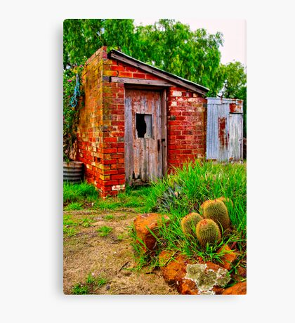 """The Garden Shed"" Canvas Print"