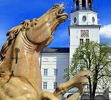 Horse Fountain in Salzburg Austria by Elzbieta Fazel