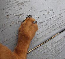 Dog leg by Ruth Ford