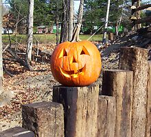 Jack O' Lantern by Bill Marsh