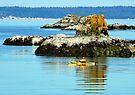 Larrabee Kayaker by Tamara Valjean