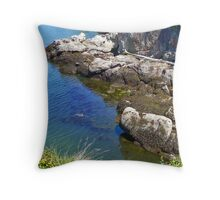 Larrabee 19 Throw Pillow