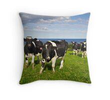 Kiama Hinterland Throw Pillow