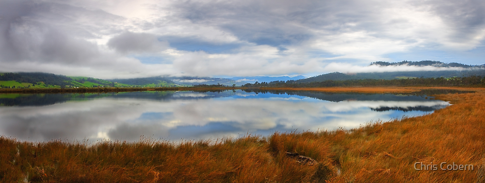 Morning on the Huon River by Chris Cobern