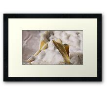 Cheese I Framed Print