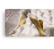 Cheese I Canvas Print