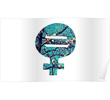 Venus Symbol & Equal Sign Poster