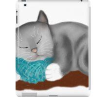 Yarn Pillow for Kitten Nap iPad Case/Skin