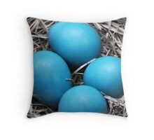 Robin Eggs Throw Pillow