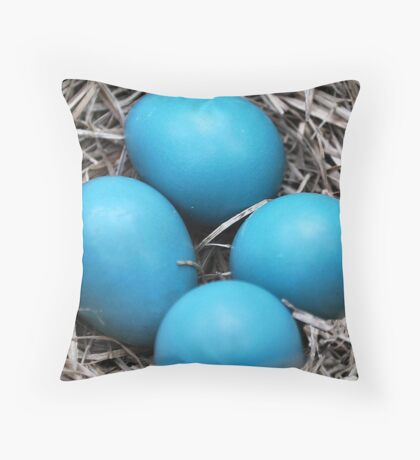 Robin Eggs Throw Pillow