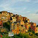 Corniglia Evening, Cinque Terre by Harry Oldmeadow