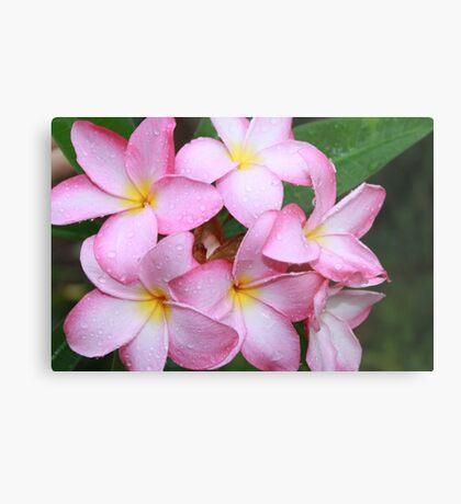 Leis Flower Metal Print