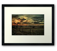 Sunset At The Old Tree Framed Print