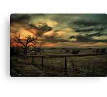 Sunset At The Old Tree Canvas Print