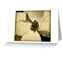 close up of a Dogwood Greeting Card