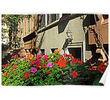 New York house and flowers Poster