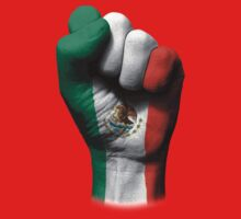 Flag of Mexico on a Raised Clenched Fist  Baby Tee