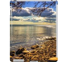 Cape John Beach iPad Case/Skin