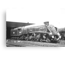 """A4 Class Pacific """"Silver Fox"""" Canvas Print"""