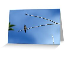 Big world from a small point of View Greeting Card