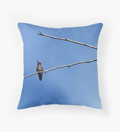 Big world from a small point of View Throw Pillow