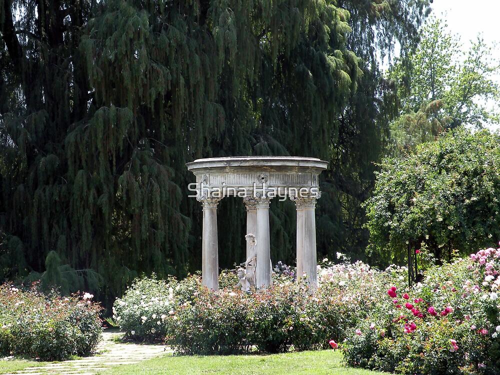 Roman Garden by Shaina Haynes