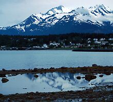 Twilight ~ Haines Alaska by Barbara Burkhardt