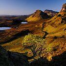 Quiraing, Isle of Skye by Thomas Peter