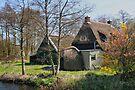 A Place To Call Home by Jo Nijenhuis