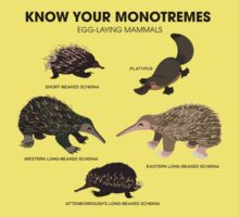 Know Your Monotremes Kids Tee