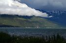 Set the Mood ~ Haines Alaska by Barbara Burkhardt