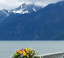 Brightness of Summer ~ Haines Alaska by Barbara Burkhardt
