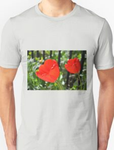 Backlit Red Tulips T-Shirt