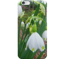 Spring Snowflakes iPhone Case/Skin