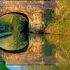 Oxford Canal 2 by gollum1985