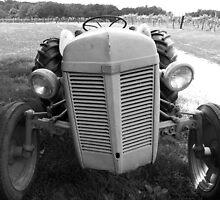 Ferguson Tractor by Sherry Graddy
