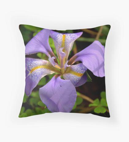 Iris Sanguinea Throw Pillow