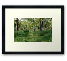 Going for a Walk in the Wood Framed Print