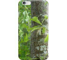 New Mayfly iPhone Case/Skin