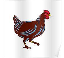 Chicken Hen Walking Side Woodcut Poster