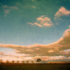 Landscapes from the Northern Tablelands of New South Wales, Australia by Kitsmumma