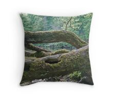 Aysgarth Falls No4 Throw Pillow